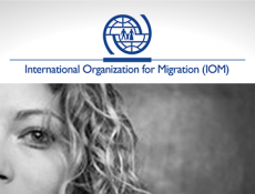 iom-wordpress-loesning